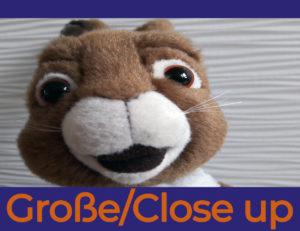 Einstellungsgrößen: Große/Close Up