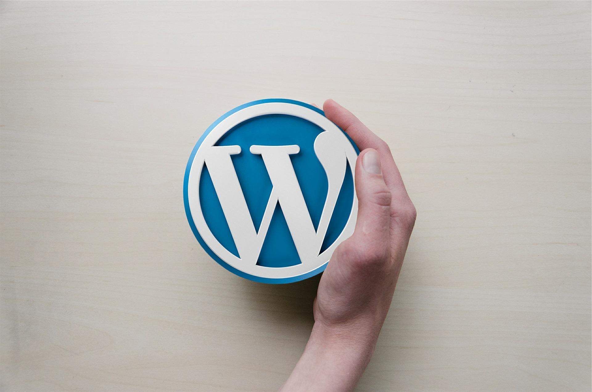 Warum ich dir Wordpress für deine Webseite empfehle