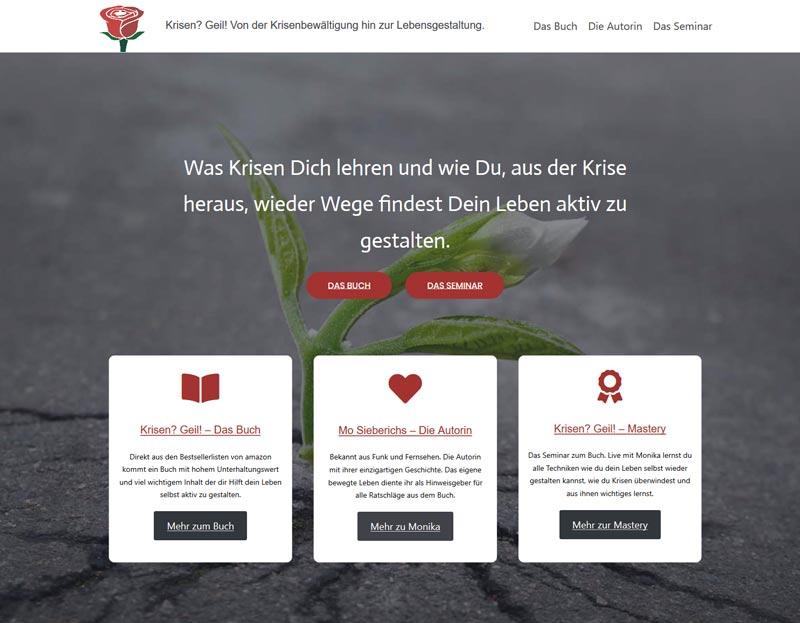 Webseite gestalten krisengeil.de